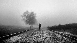 Como una persona solitaria en la niebla